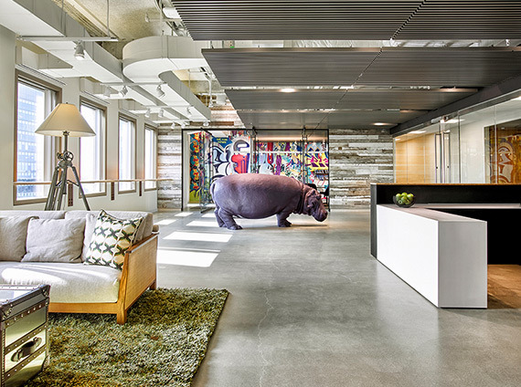 potamus embraces adaptability in their workspace