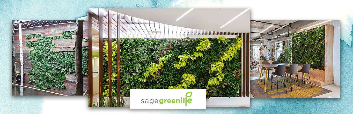 Living walls by Sagegreenlife