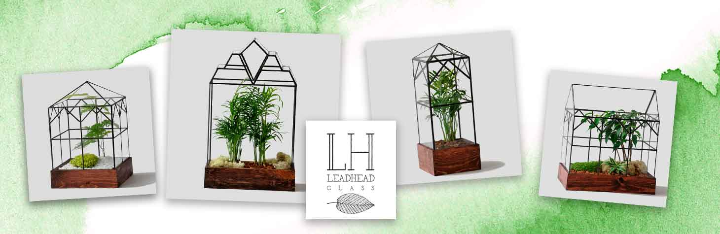 terrariums by Leadhead Glass