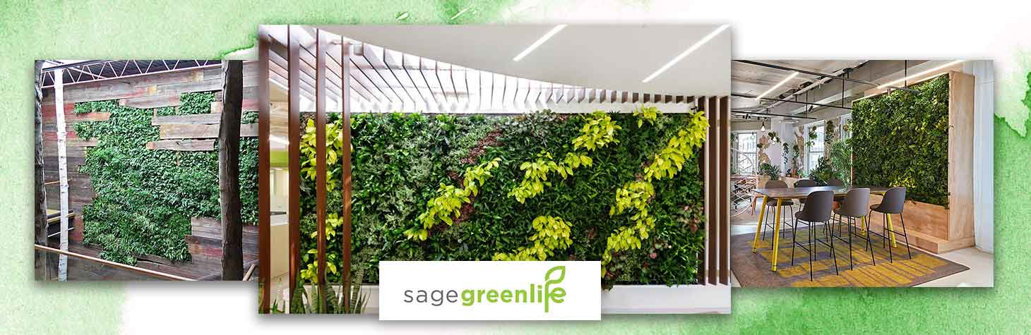 Living Walls by Sagegreenlife enhance corporate work environments